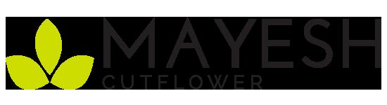 Mayesh Cutflower (CFW) – Flower Presale